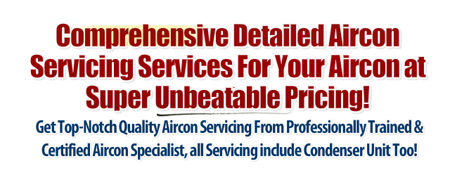 detailede aircon servicing in Singapore by great aircon